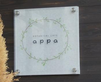 appa1
