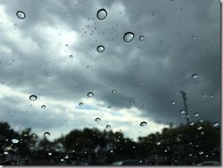 突然の雨 [写記 vol.701]