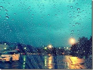 雨 [写記 vol.181]
