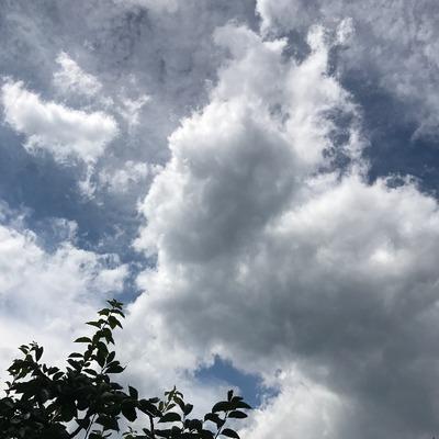 天国への階段ロス [写記 vol.1570]