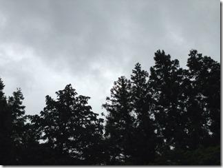 雨の空 [写記 vol.64]