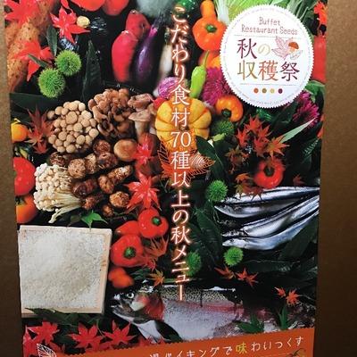 【蓼科グランドホテル滝の湯】これは食べすぎてしまう!秋の収穫祭開催中だよ [写記 vol.1241]