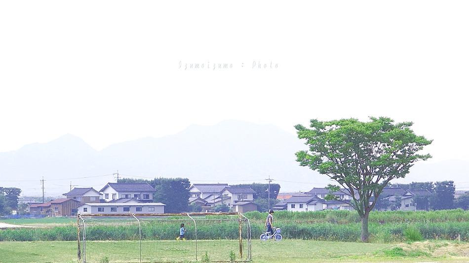 DSC08818n