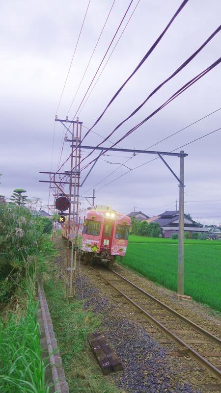 DSC08926n