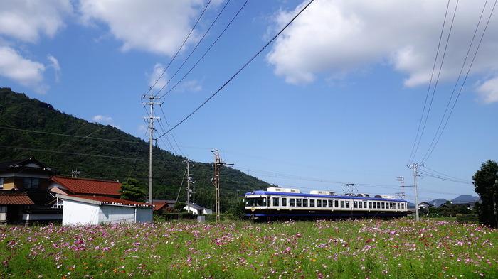 DSC03792 (1)