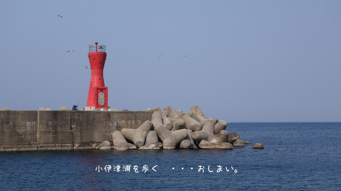 DSC02198oshi