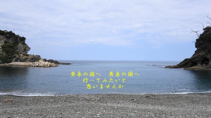 y1DSC01439