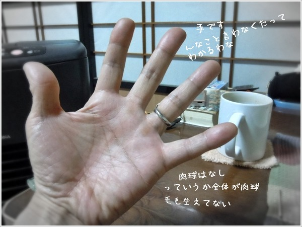f6fa5c36.jpg