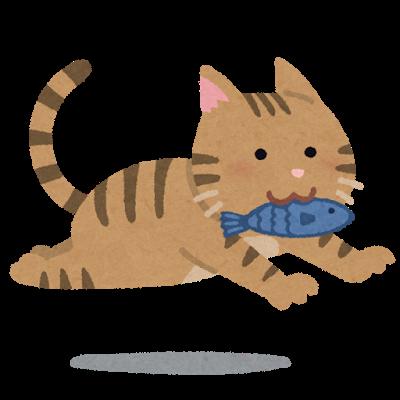 cat_fish_run