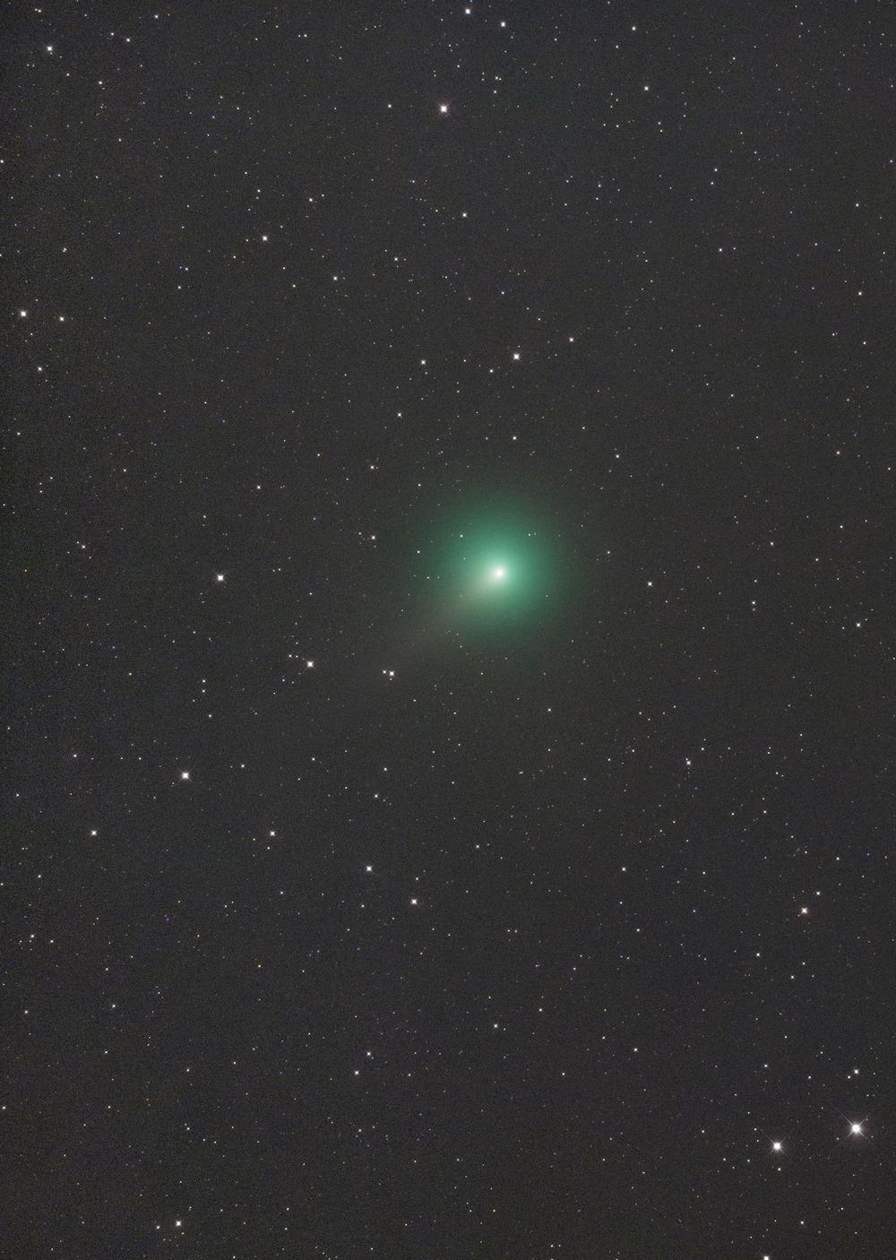 岩本彗星20190214−15自宅