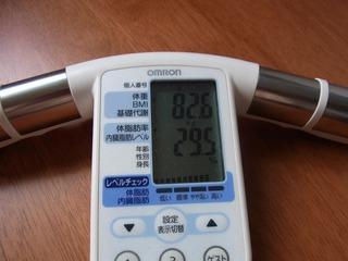 体脂肪110617