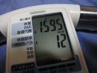 RIMG0620