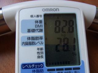体脂肪110621