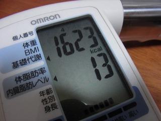 111102 (5)