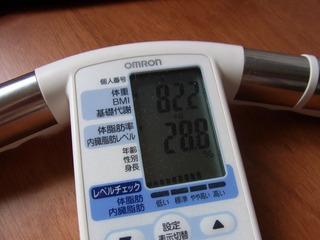 体脂肪110615