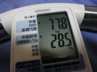 RIMG0619