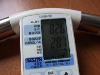 110626体脂肪