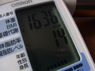 110115 (2)