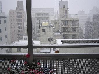12/22雪