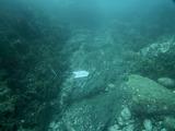 ハタンポ岩北側チェーン