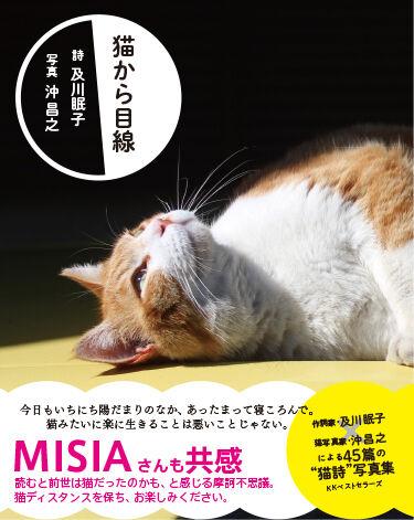 10-猫から目線