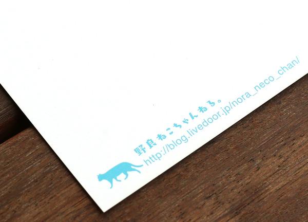 BS8R0254