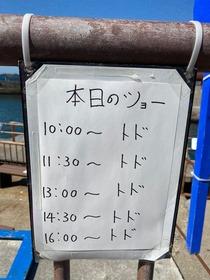 【悲報】水族館のトドさん、めちゃくちゃ酷使されてしまうwwwww