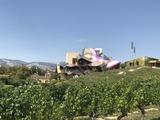 Winery B