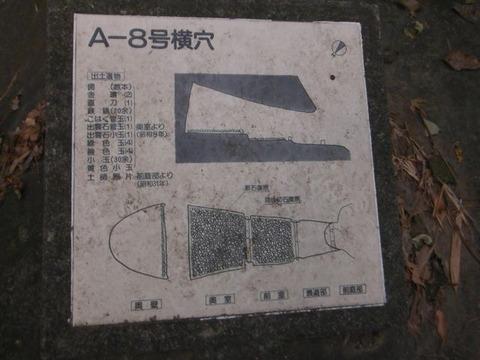 DSCF3196