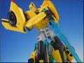 TFV01_bumblebee(28)