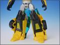 TFV01_bumblebee(16)