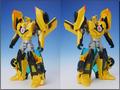 TFV01_bumblebee(12)
