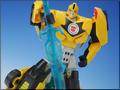 TFV01_bumblebee(27)