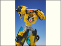 TFV01_bumblebee(21)