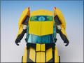 TFV01_bumblebee(8)
