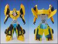 TFV01_bumblebee(11)