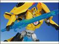 TFV01_bumblebee(29)
