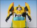 TFV01_bumblebee(9)