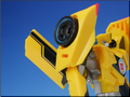 TFV01_bumblebee(15)