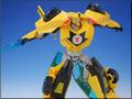 TFV01_bumblebee(22)