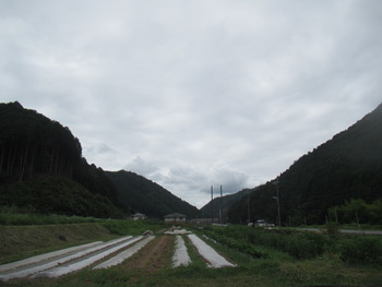 IMG_1177