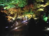 嵐山天龍寺・宝巌院。