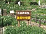 黒岩水仙峡_1