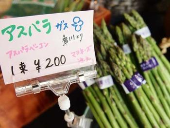 野菜ソムリエ_4
