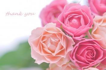 言葉心の花