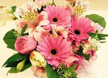 国際のお花
