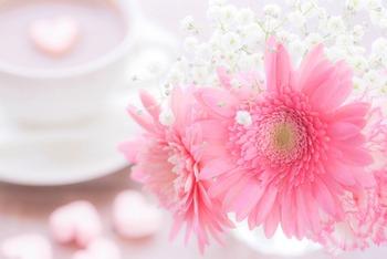 ピンクの花_2