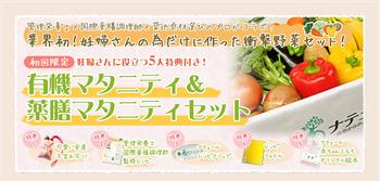 妊婦さんのための有機野菜