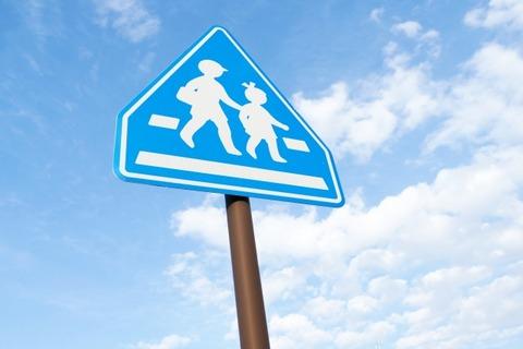 道で歩行者と車戦っても必ず歩行者が勝つんだがそれを理解しない車乗りが多い