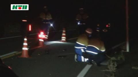 長崎市の市道でバイクとイノシシが衝突。バイクの30代男性が意識不明の重体、イノシシは死亡